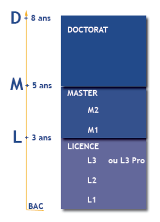 études-master-licence-doctorat-DUT-BUT