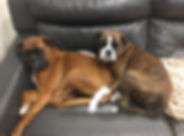 Frankie & Jo.jpg