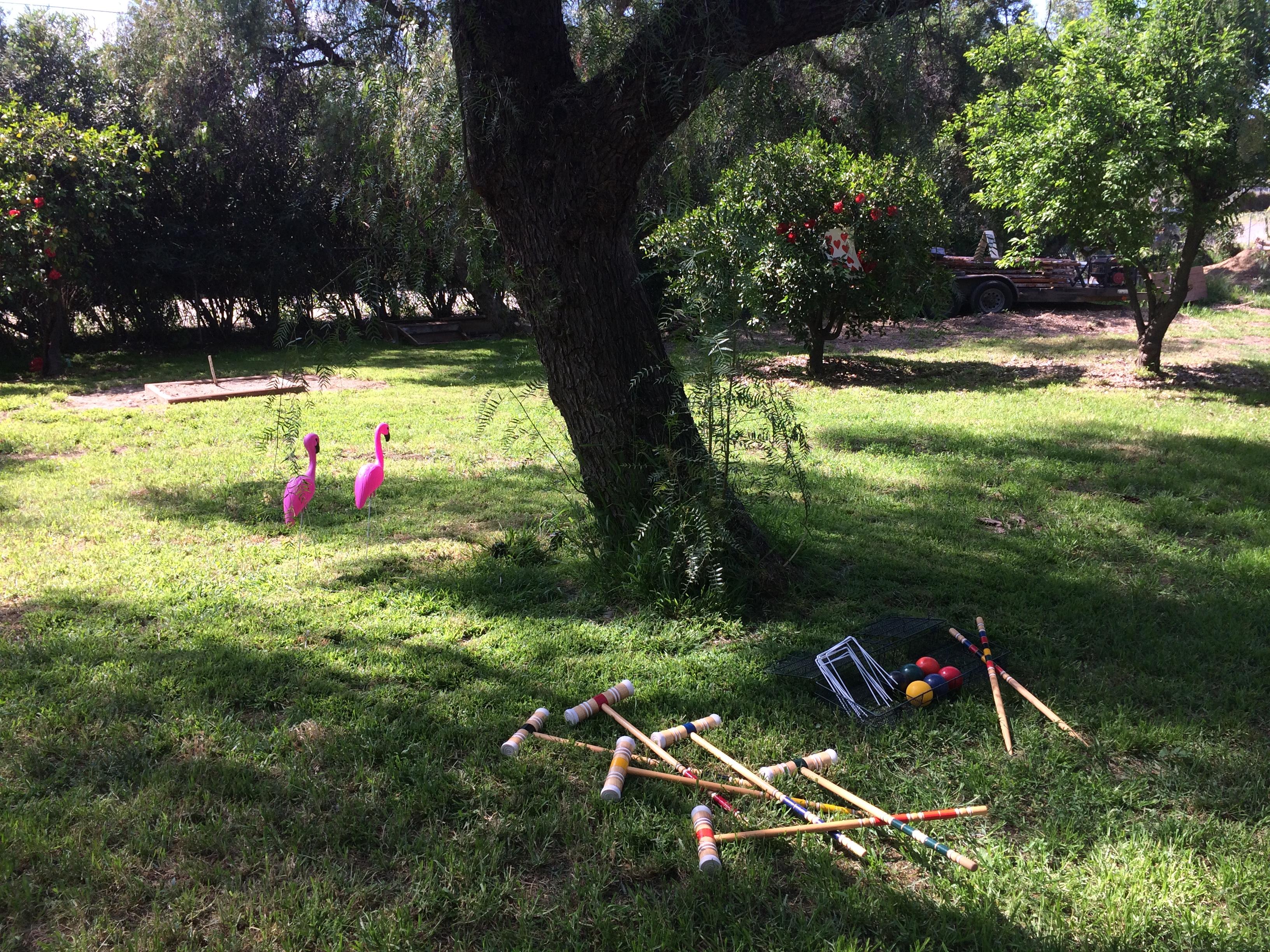 Dome Asylum Lawn Games