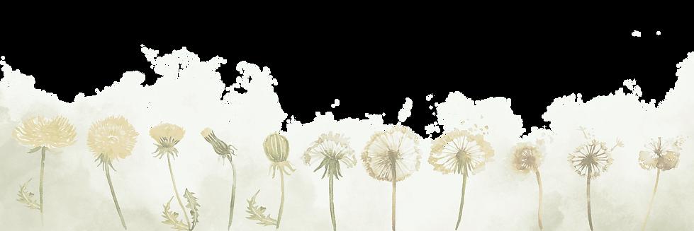 flowersandgreen_edited.png