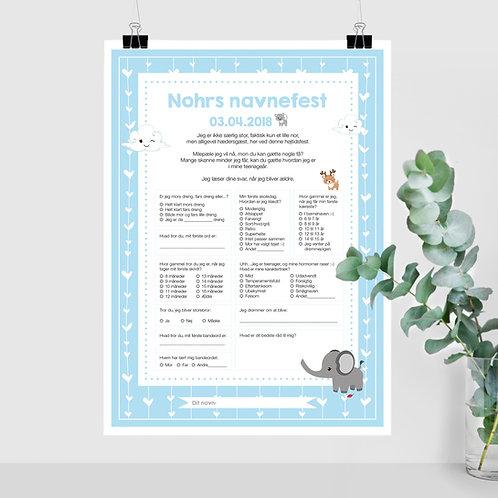 Navnefest / Milepæle