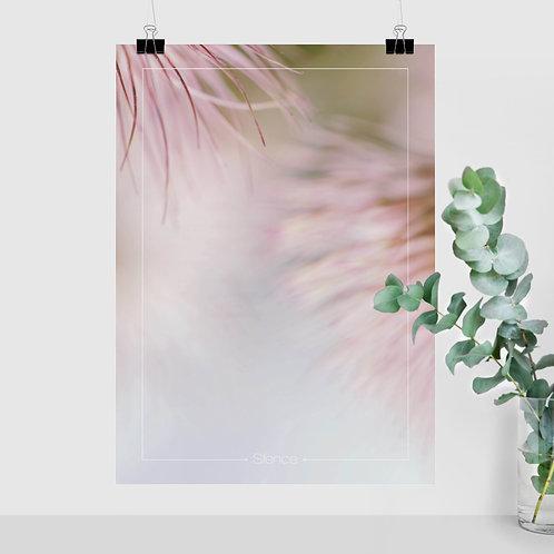 Silence (Flower)