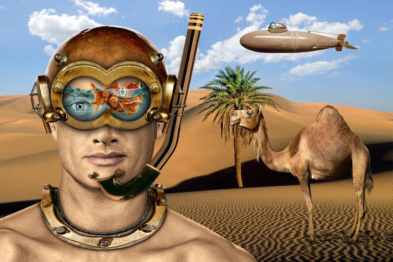 desert diver