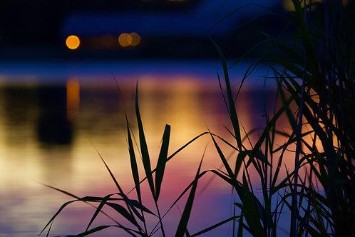 Sunset at Lake 86, Cotswold Water Park Giclée Fine Art Print