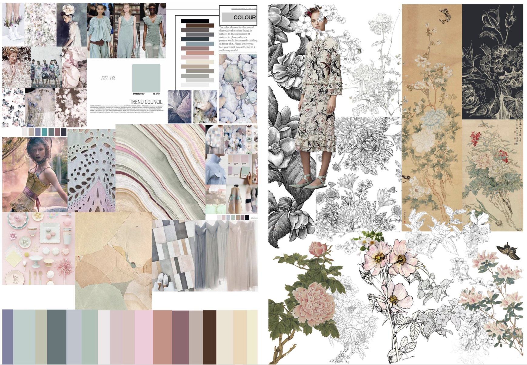 Color Palette and Mood Board