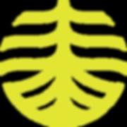 Simbolo Transparente_Prancheta 1.png
