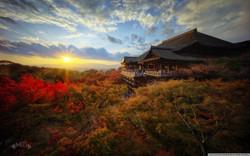 sunset_196-wallpaper-1280x800