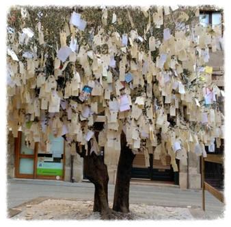 L'arbre dels desitjos