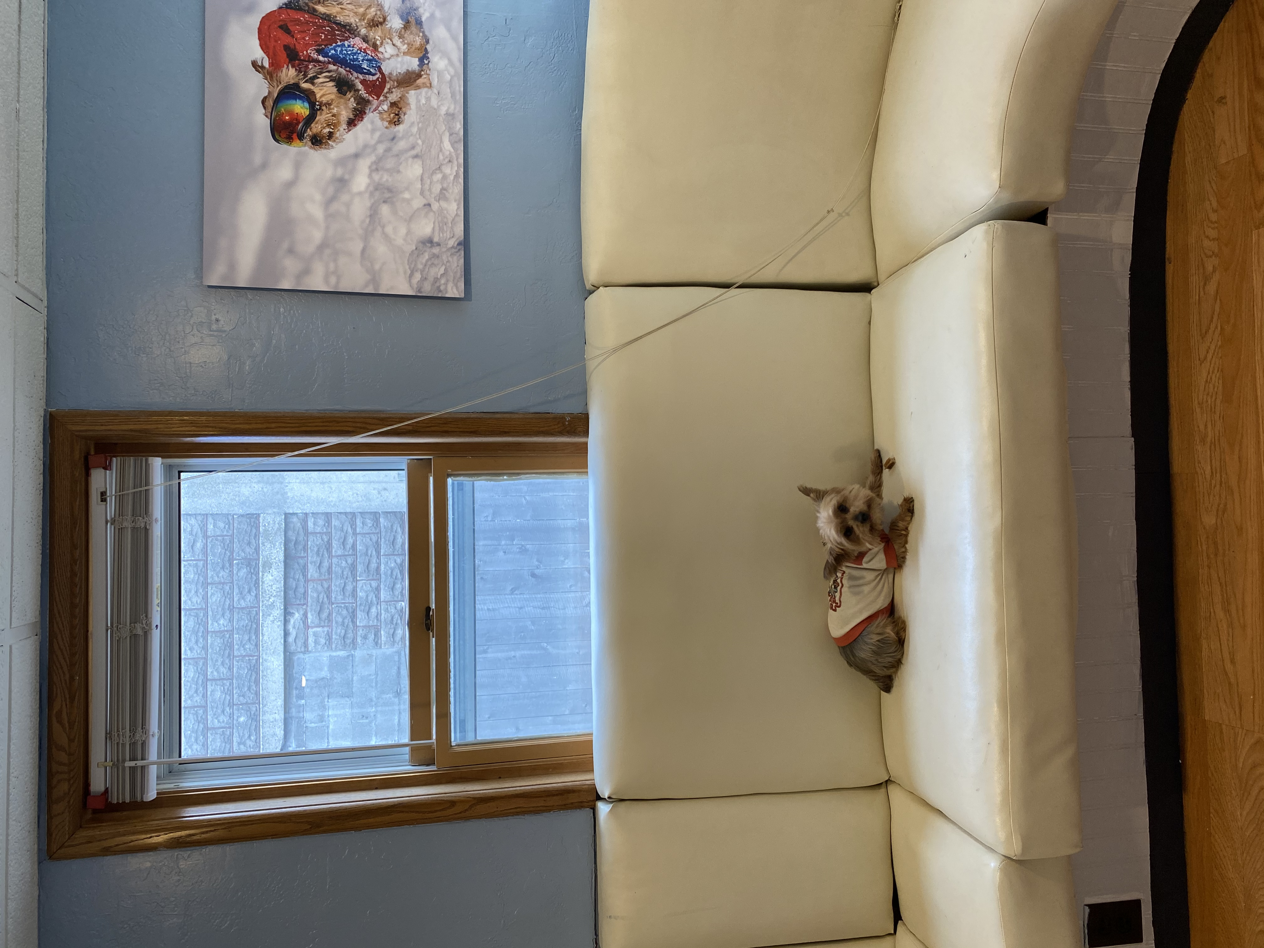 The Sprocket Lounge