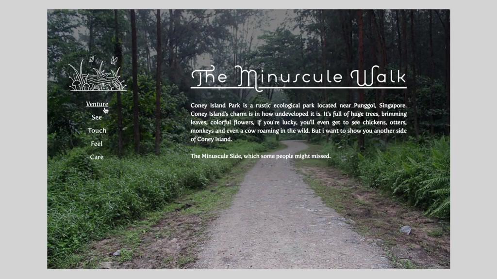 The Miniscule Walk