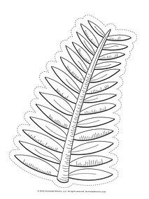 IM Palm drawing.jpg