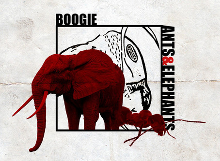 Boogie: Ants And Elephants Album Review