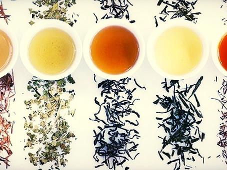 The 5 Major Types of Tea