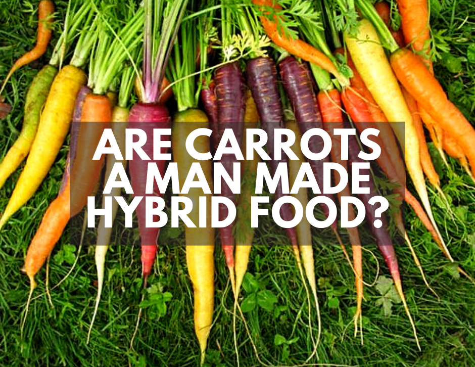 are carrots natural or man made hybrid foods
