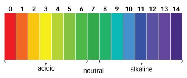 Are pineapples bad for you?  ph scales