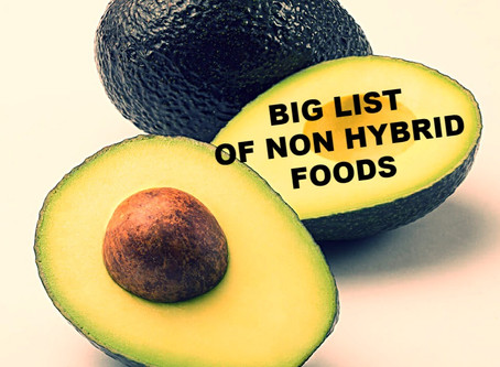 FOOD BY GOD: Non-Hybrid List