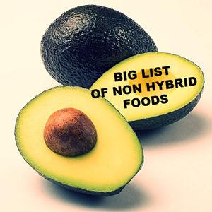 FOOD BY GOD: Non-Hybrid List