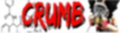 snatched podcast banner.jpg
