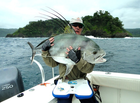 Big Roosterfish and Snooks