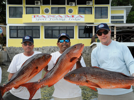 Crazy Fishing @ Panama Sportfishing Lodge