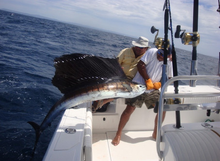 January 2009 Fishing report