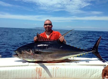 Big Marlins, Big YellowfinTunas, Dorados, Cuberras, and more