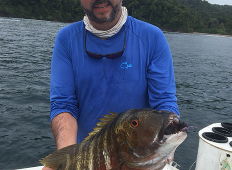 More March 2018 Leonard from Brazil back down again for more action aboard our Boutique Mothership