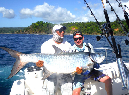 Huge Pacific Tarpon!!!!! with Marlin thrown in