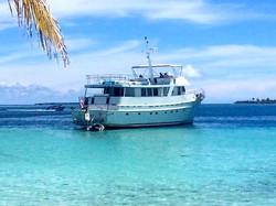 Rowley Marine Yachtmothership at Panama sport fishing lodge
