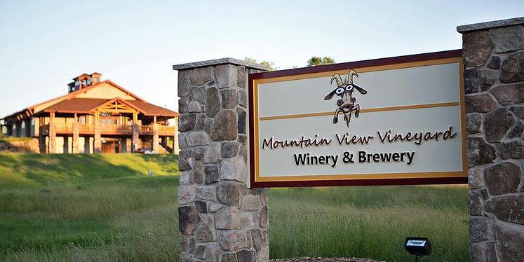 mountain view vineyard.jpg