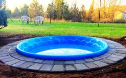 Chalet Dog Pool