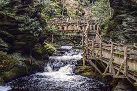 bushkill falls.jpg