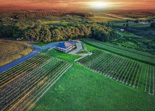 blue ridge winery.jpg