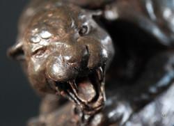la panthere agressive
