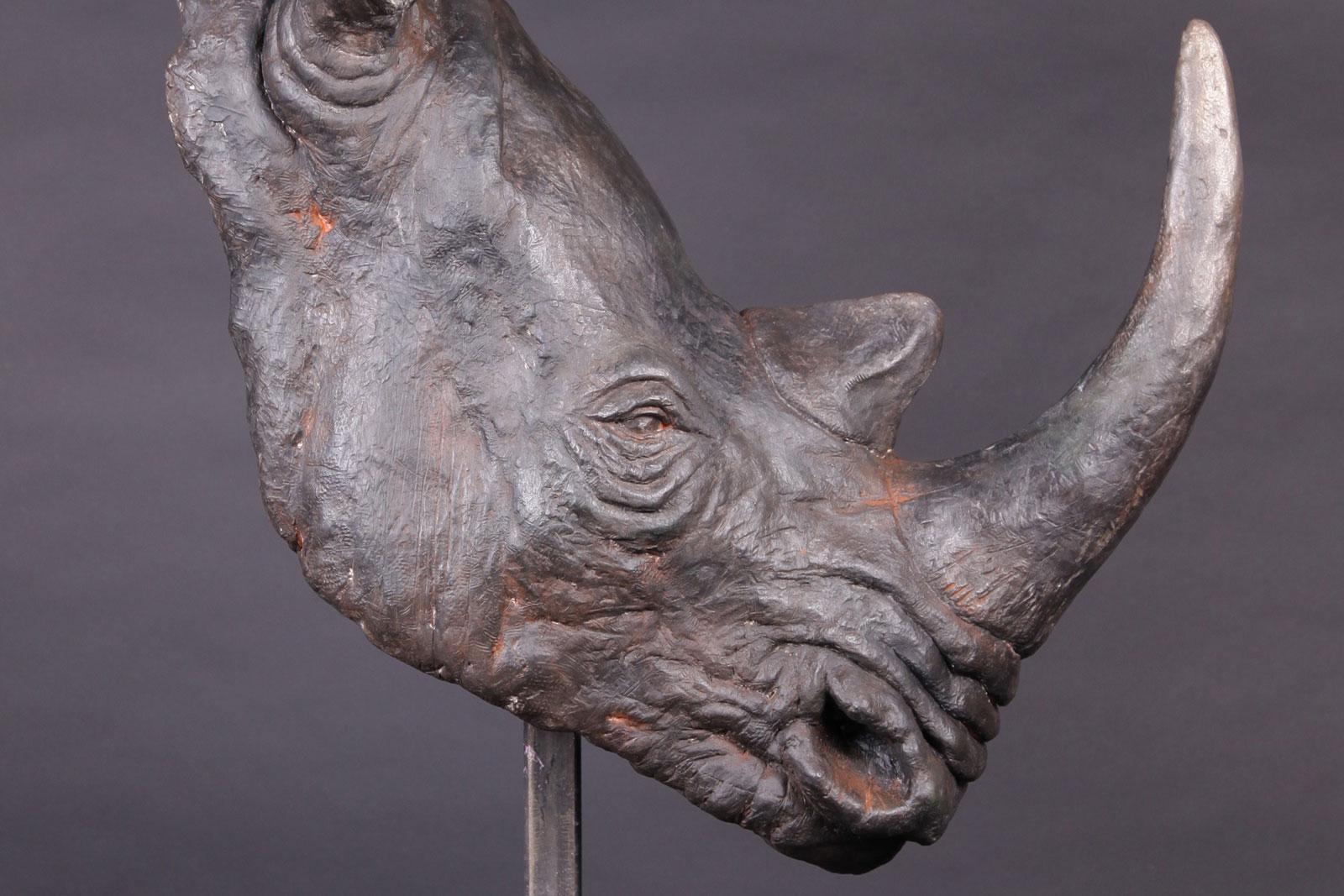 rhinotete