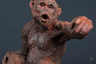 chimp-brastendu-3.jpg