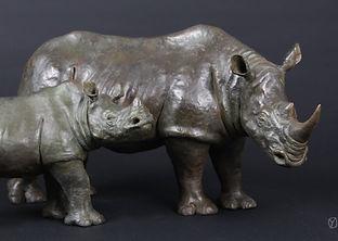 rhinos-3.jpg