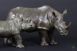 les 2 rhinos