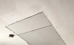 Handyman, Drywall Repair.jpg
