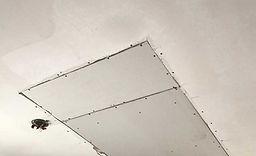 Drywall Repair.jpg