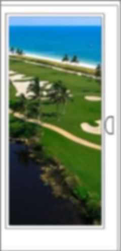 SGD Door View Golf.jpg
