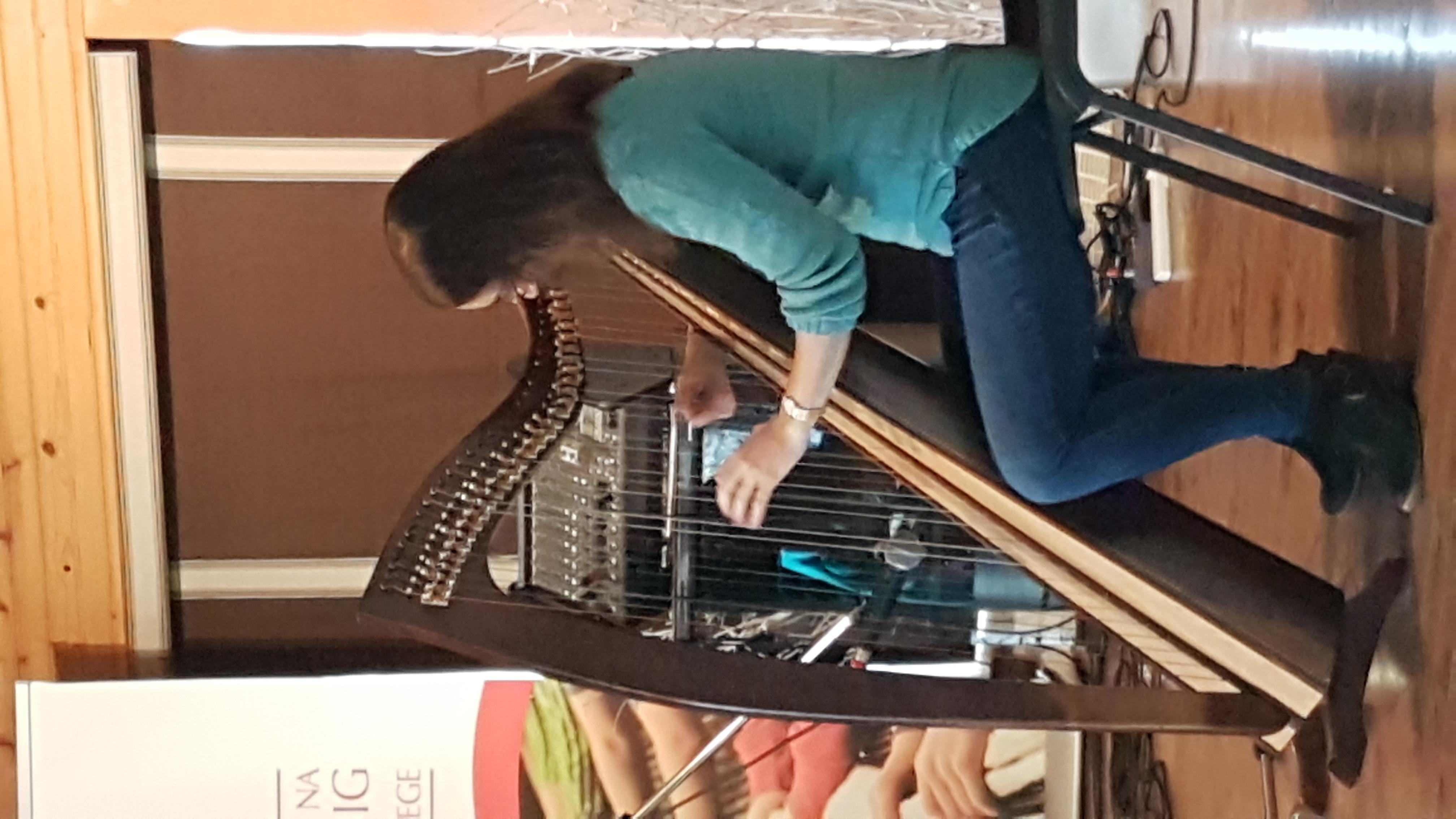 Harpist at a Ceilidh