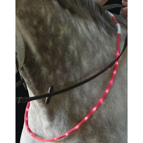 Horse Flashing Necklace / Hi Visibility with USB rechargeable battery