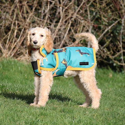 Dogs Print Dog Coat