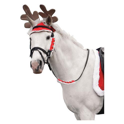 Christmas Santa Horse Outfit