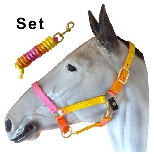 Rhubarb & Custard Rainbow Headcollar & Leadrope Set