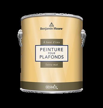 Peinture_d_int_rieur_pour_plafonds_au_fi