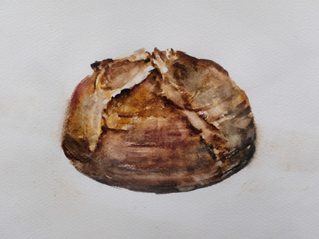 Ekmekten Önce