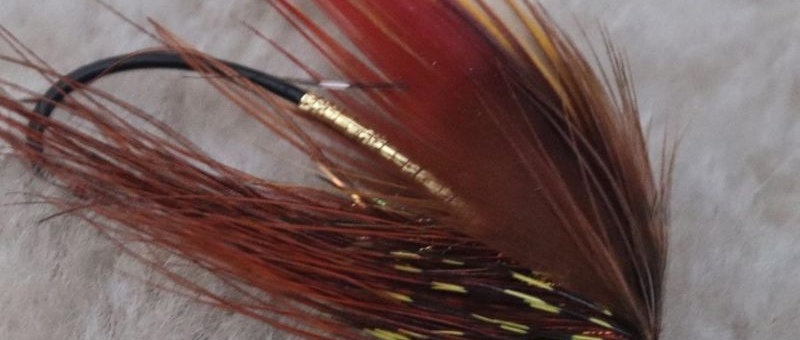 Pheasant Wing Free Style