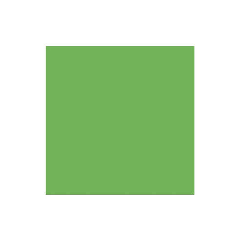Leaf Green 12x12 Cardstock Paper Pack (10/pk)